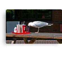Gull-Ping it down Canvas Print