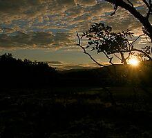 As the sun sets by Richard Pitman