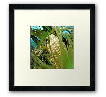 Late Summer Harvest Framed Print