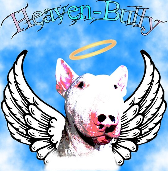 Heaven-Bully by Louise Morris