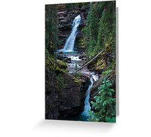 Mineral Waterfall in the San Juan's Greeting Card