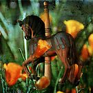 Even Carousels Dream by Lois  Bryan