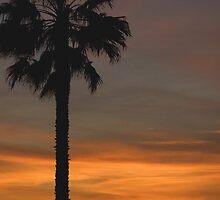 Santa Monica sunset by raw1805