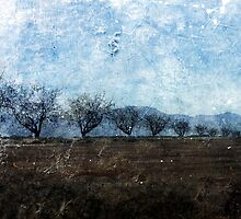 A row of Trees. by Lynne Haselden