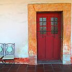 Red Door by Christine Wilson