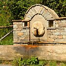 Rural Water Fountain by Nickolay Stanev