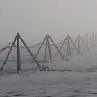 Mist on the lines by atlasthetitan