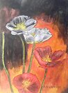 Poppies VIII by Alexandra Felgate