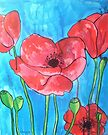 Poppies IX by Alexandra Felgate