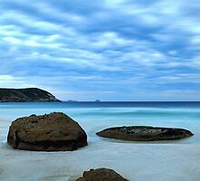 Natural Divisions - Wilsons Promontory by Step9