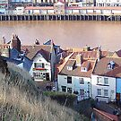 Whitby Rooftops. by sweeny