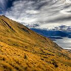 Golden Otago - New Zealand by Kimball Chen