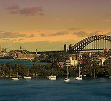 Sydney by Stacey Pritchard