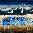 Seagulls - Pool Patrol by clydeessex