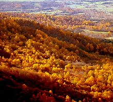 The Autumn Mountainside  ^ by ctheworld