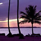 Palm trees in the Sunset by William Guilmette