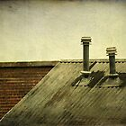 Roof Tops by Jonicool