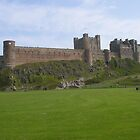Bamburgh Castle, Northumberland by Peter Telford