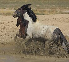 Dashing Through The Mud by Gene Praag