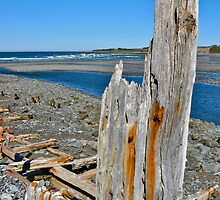 Salmon River Beach II by David Davies