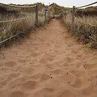 Sand Walk by LinneaJean