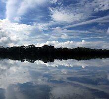 Reflections on Lake Sandoval- Peru by tslezak