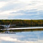Float Plane on a Calm Lake by Don Arsenault