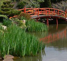 Japanese Gardens by PhotosByG