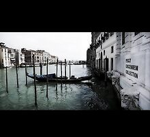 The Lion's Breath (Gives Life To Venezia) by Kozology