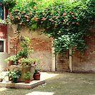Venice - the sunny corner by Luisa Fumi