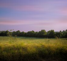 English Field - Oxfordshire, England by Mark Richards