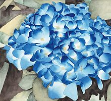 Blue Hydrangea by Ken Powers