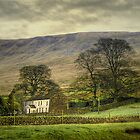 Farmhouse in Winter under Mallerstang Edge  by patrixpix