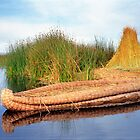 Reed Reflection - Lake Titicaca, Peru by Nigel Fletcher-Jones