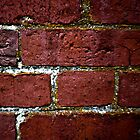 brick wall decay by Eric Maki
