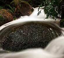 Cement Creek #2 by Jason Green