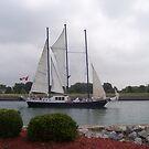 lake Ontario sails........ by IrisGelbart