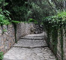 Pathway of the Summer Palace by marleguardia