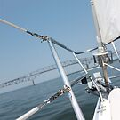 Boating on the Chesapeake by Elspeth  McClanahan