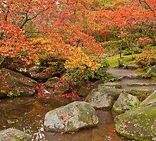 Japanese Gardens, Washington Park Arboretum by Barb White