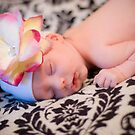 Sweet Little Sleeper by photodivaanna