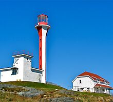 Cape Forchu Lightstation III by David Davies