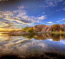 Shine by Bob Larson