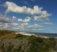 Viewpoint of high-up on a handrail @ Logan's beach II by Britt-Astrid