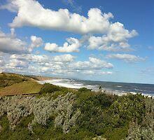 Viewpoint of high-up on a handrail @ Logan's beach III by Britt-Astrid