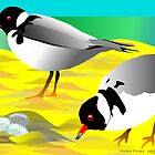 Hooded Plovers by rodesigns