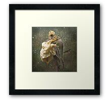 Rust 'n Roses ~ No 18 Framed Print