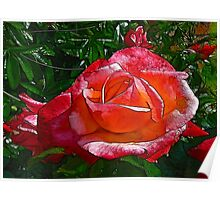 Stained Glass Rose Poster