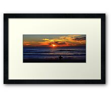shark bait !!! Framed Print