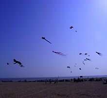 Clacton on Sea  - Kites by Shannon Friel
